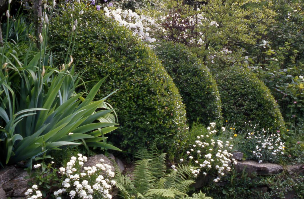 Il giardino naturale: Giardino in stile in stile Rustico di MASSIMO SEMOLA PROGETTAZIONE GIARDINI MILANO