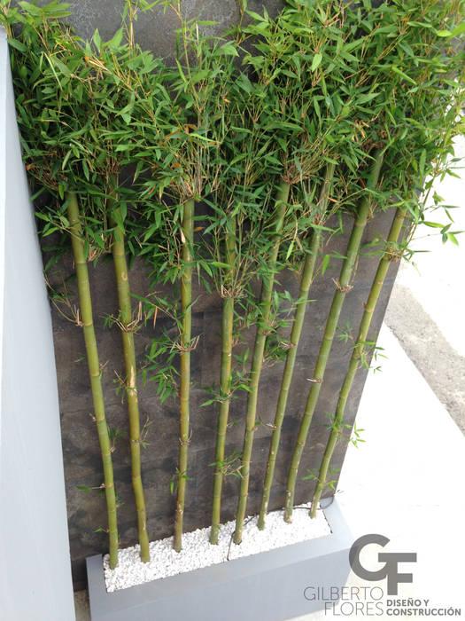Jardines de estilo  por GF ARQUITECTOS, Moderno Bambú Verde