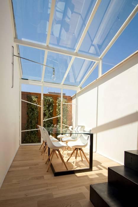Minimalist dining room by studioSAL_14 Minimalist Glass
