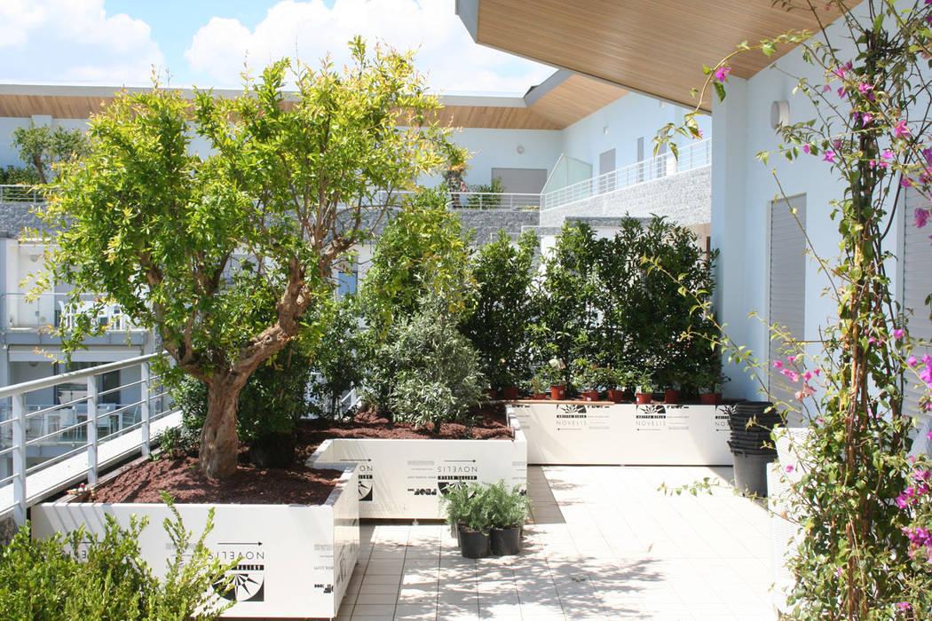 Balcones y terrazas de estilo mediterráneo de Febo Garden landscape designers Mediterráneo Aluminio/Cinc
