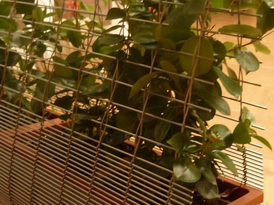 TTM ROSSI SHOWROOM - Pannelli divisori: Giardino in stile in stile Moderno di Tessitura Tele Metalliche Rossi
