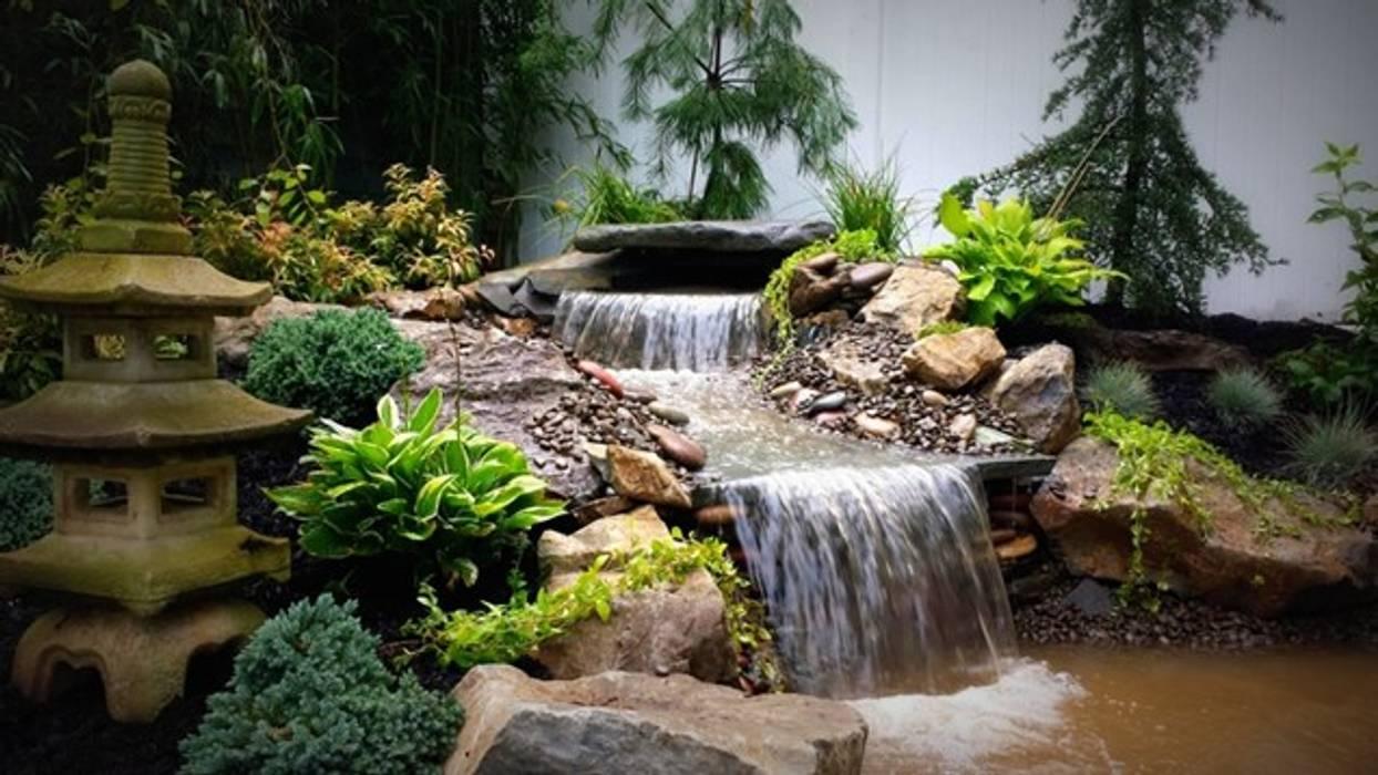 Örnek Projeler Bio Göl Havuz (Biyolojik Gölet ve Havuz Yapısalları) Kırsal Bahçe