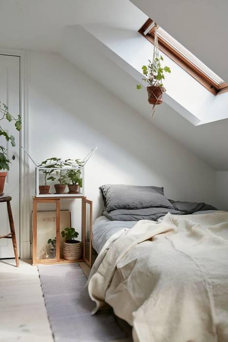 Pollice verde: piante per arredare: camera da letto in stile di ...