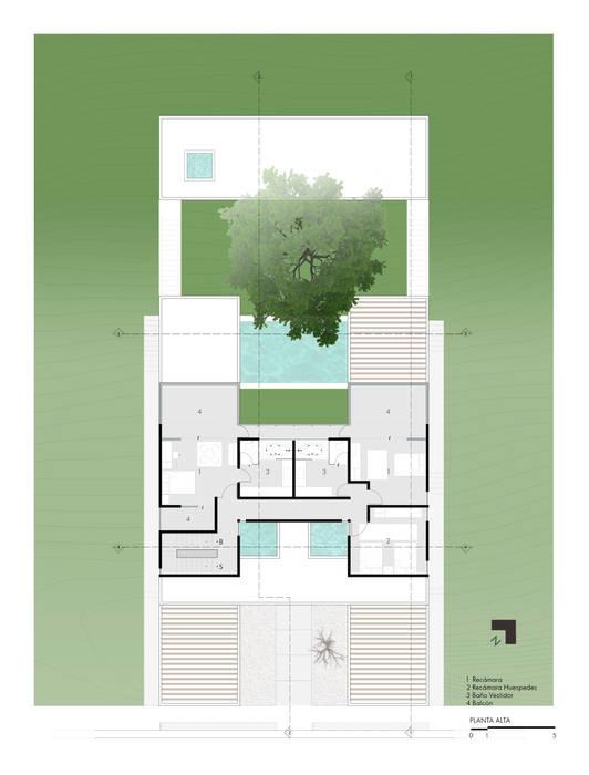 Planta alta de Yucatan Green Design