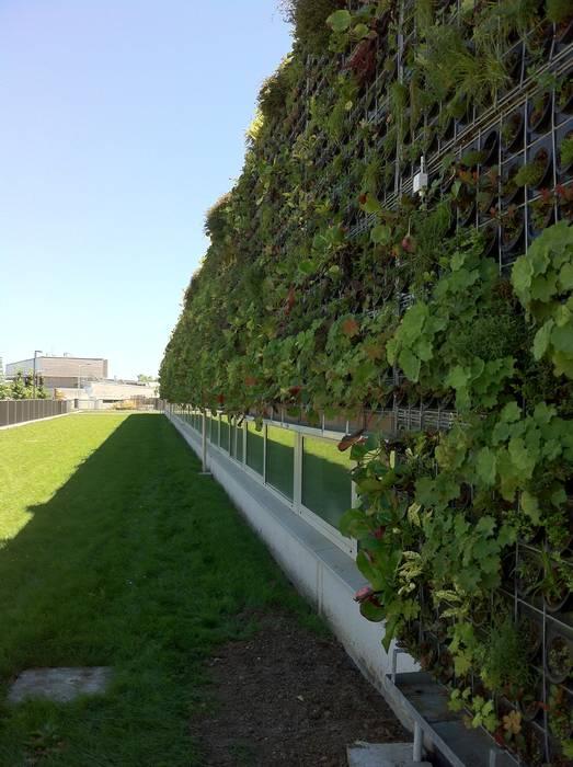 Façade végétalisée / Mur végétal extérieur VERTICAL FLORE: Maisons de style de stile Rural par Vertical Flore