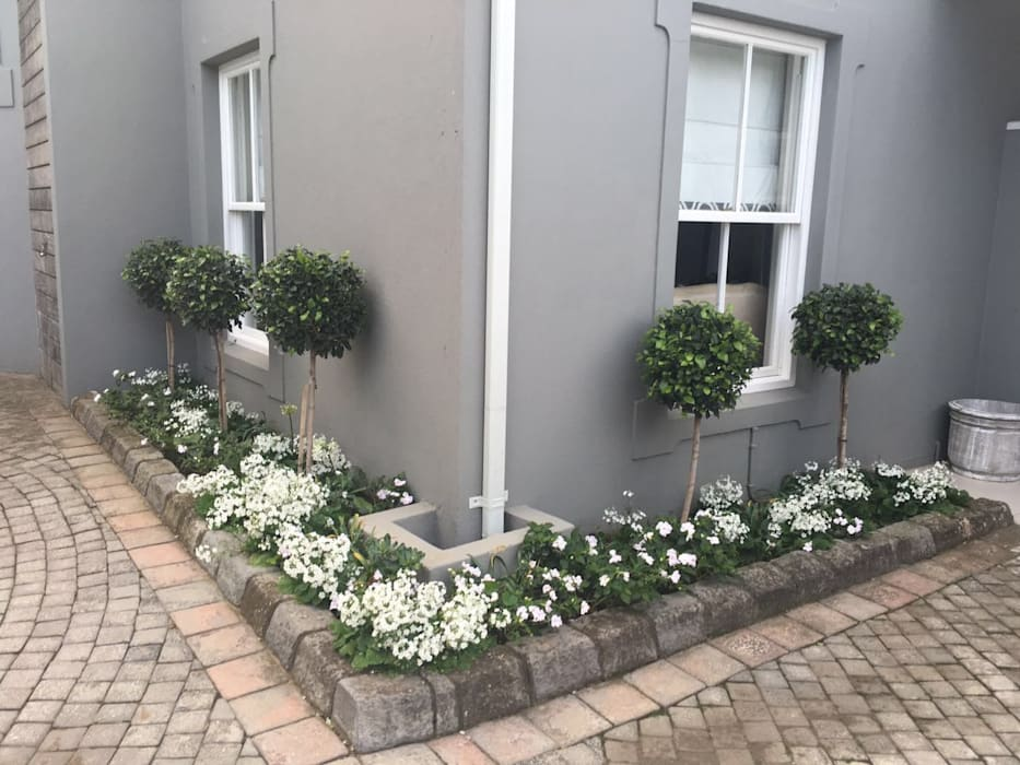 Near the entrance Classic style garden by Helen Sparg Landscape Designer Classic