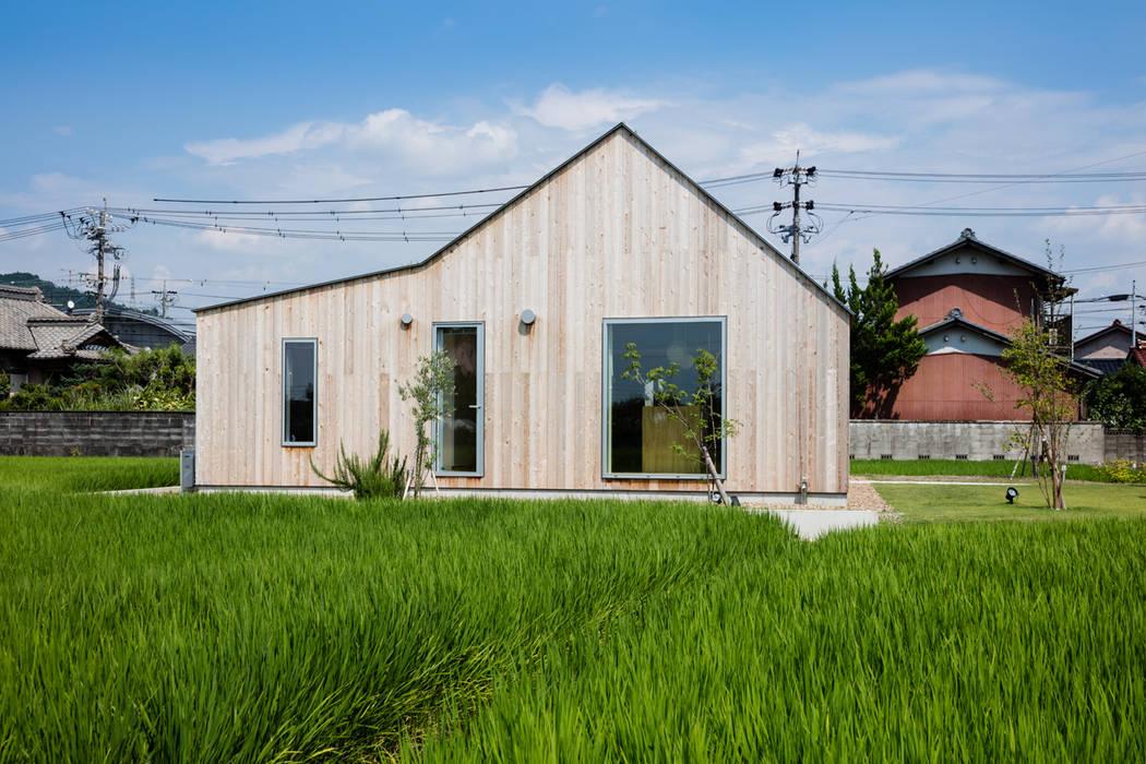 西側ファサード/夏 オリジナルな 家 の hm+architects 一級建築士事務所 オリジナル 木 木目調