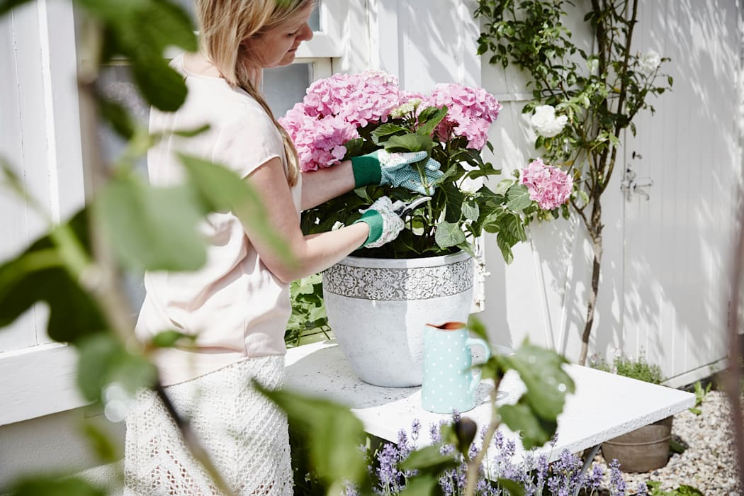 Fantastische ideeën voor het versieren van uw terras kweeklamp