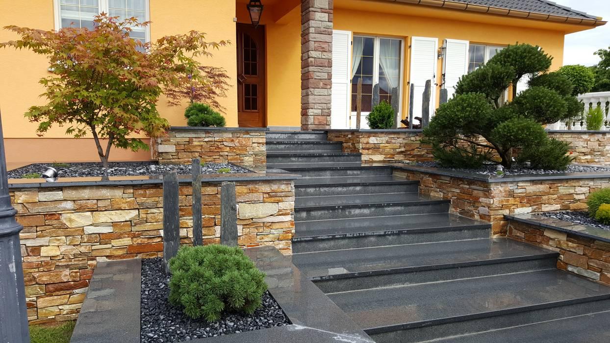Escaliers: Maisons de style  par Schwein Aménagement, Classique