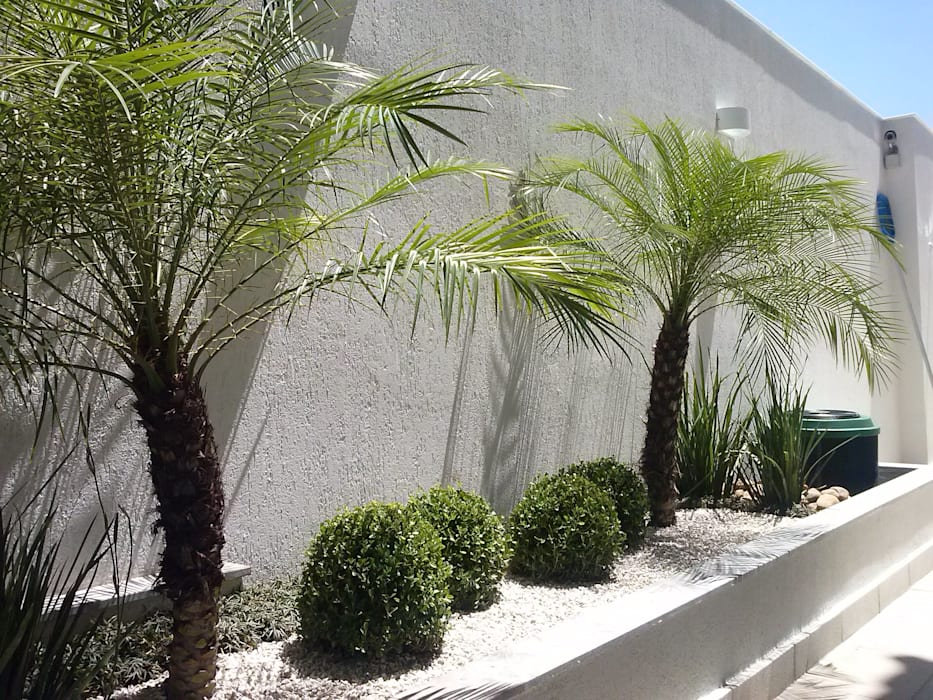 Tropical Contemporâneo: Jardins  por Mateus Motta Paisagismo