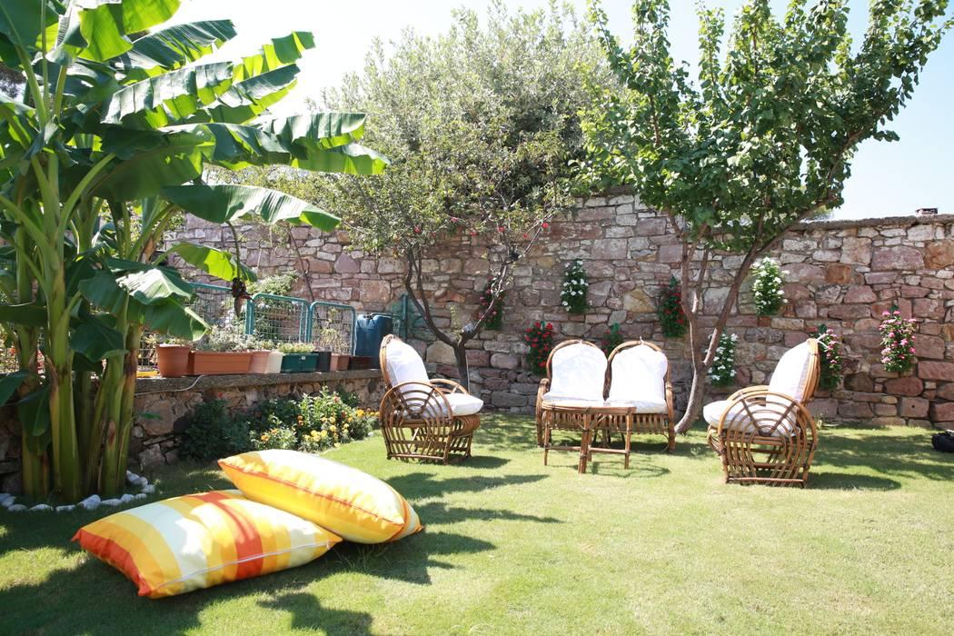 Jardines de estilo mediterráneo de homify Mediterráneo Bambú Verde
