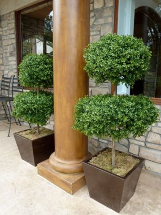 Artificial Topiary Trees:  Houses by Sunwing Industries Ltd,Modern Wood Wood effect
