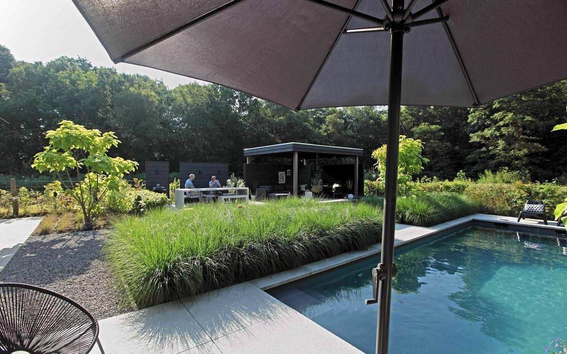 Achtertuin met zwembad tuin door stoop tuinen homify for Zwembad achtertuin