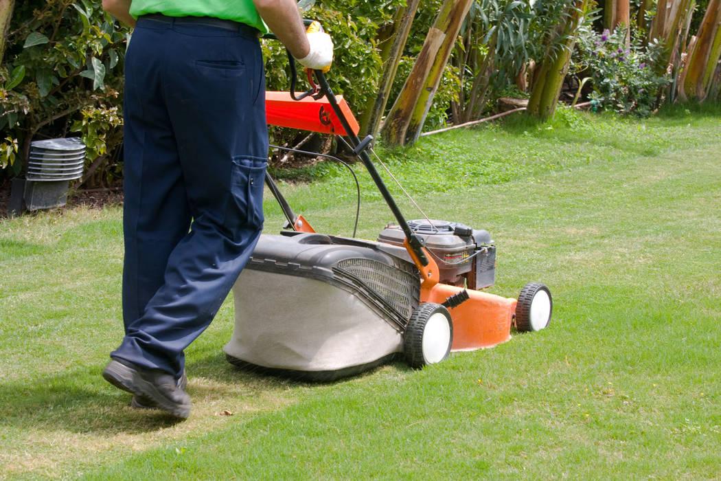 Lawn Care & Maintenance Handyman Pretoria