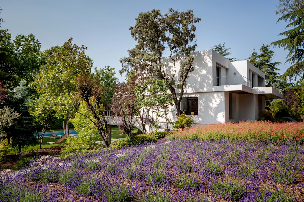 Дома в . Автор – ÁBATON Arquitectura