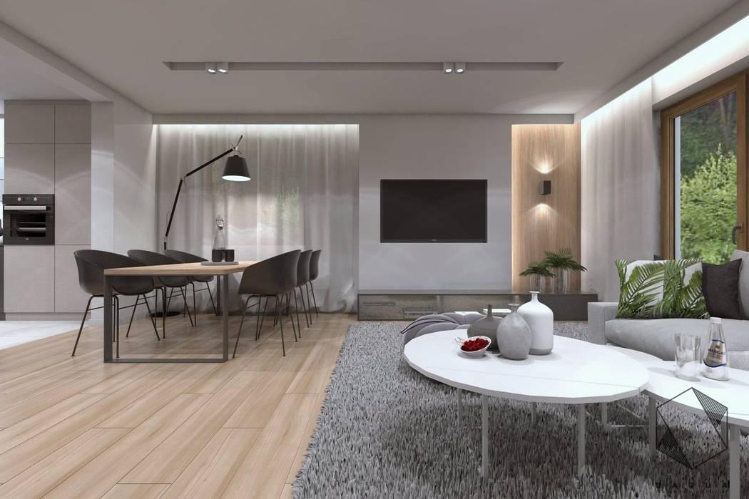Projekt domu jednorodzinnego 12: styl , w kategorii Salon zaprojektowany przez BAGUA Pracownia Architektury Wnętrz,Nowoczesny