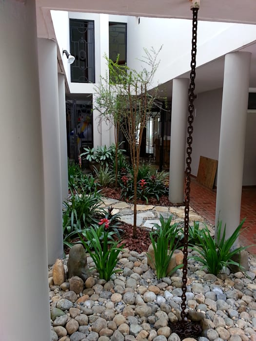 PRIVATE RESIDENCE - PANAMA CITY:  Garden by TARTE LANDSCAPES, Modern