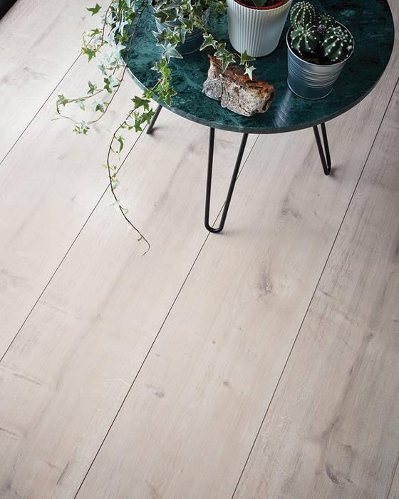 Wembury Winter Oak Modern walls & floors by Woodpecker Flooring Modern Wood Wood effect