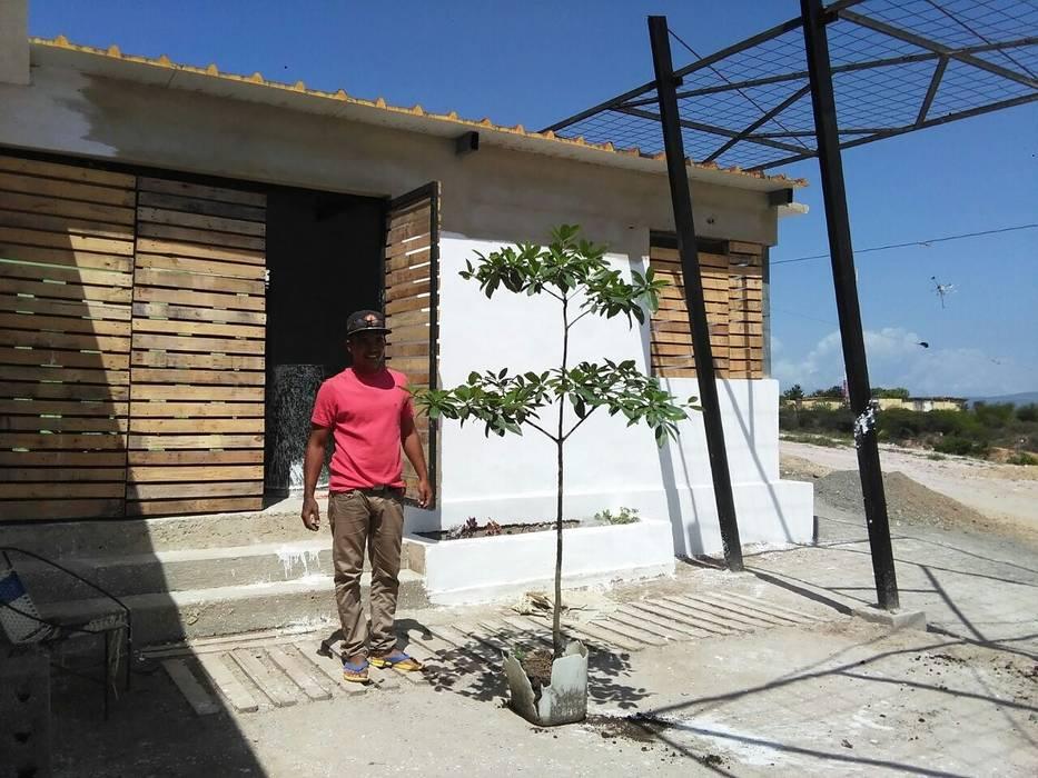 Transplantando vegetación nativa a patio interno de la vivienda: Casas de estilo  por Taller de Desarrollo Urbano