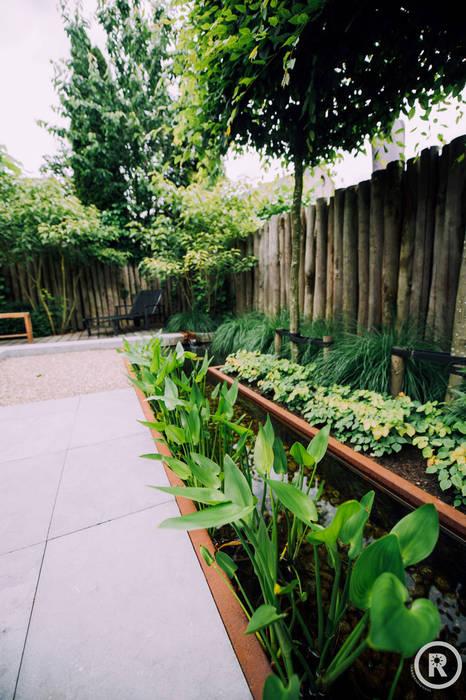 Onderhoudsvriendelijke robuuste tuin Moderne tuinen van De Rooy Hoveniers Modern
