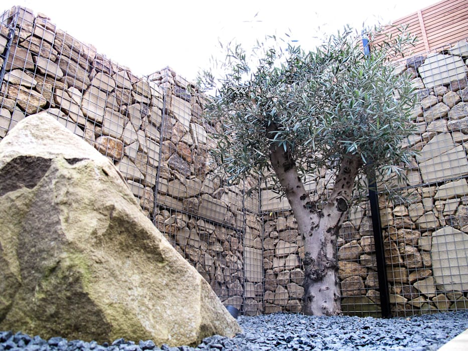 Gabion walls as you've never seen them before: modern Garden by Yorkshire Gardens
