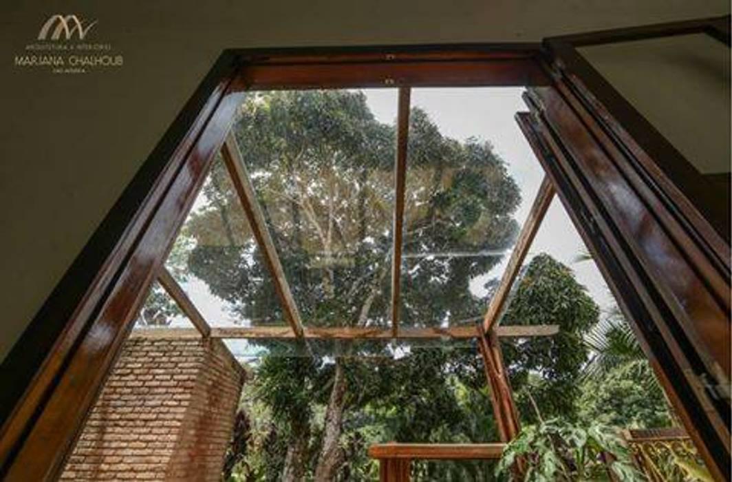 Windows by Mariana Chalhoub