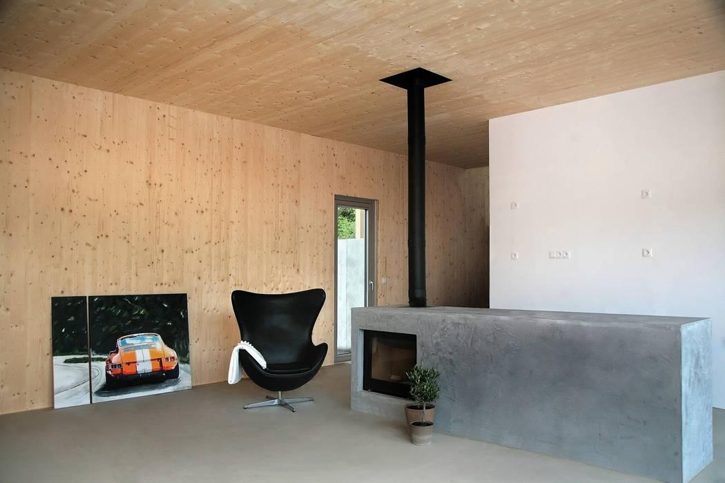 Modern living room by Planungsgruppe Korb GmbH Architekten & Ingenieure Modern Wood Wood effect