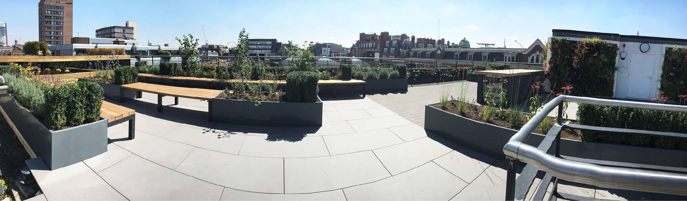 Ganton Street Roof Terrace London:  Commercial Spaces by Aralia