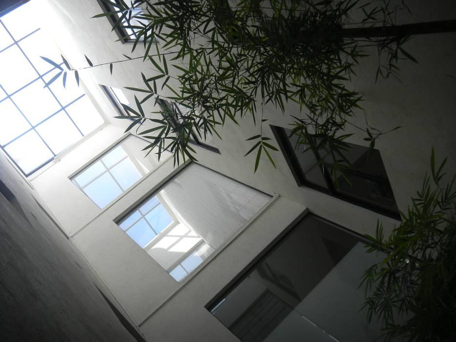LEON 76: Pasillos y recibidores de estilo  por HDA: ARQUITECTURA BIOCLIMATICA