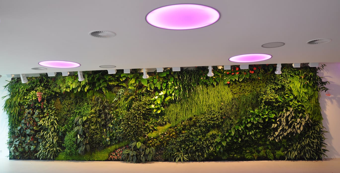 vertical garden Klinik Modern Oleh NISCALA GARDEN | Tukang Taman Surabaya Modern
