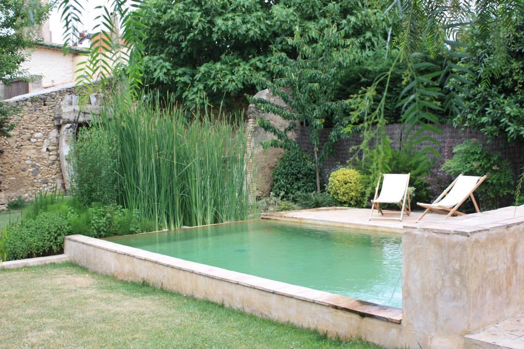 PISCINAS NATURALES Piscinas de estilo tropical de jardinista Tropical