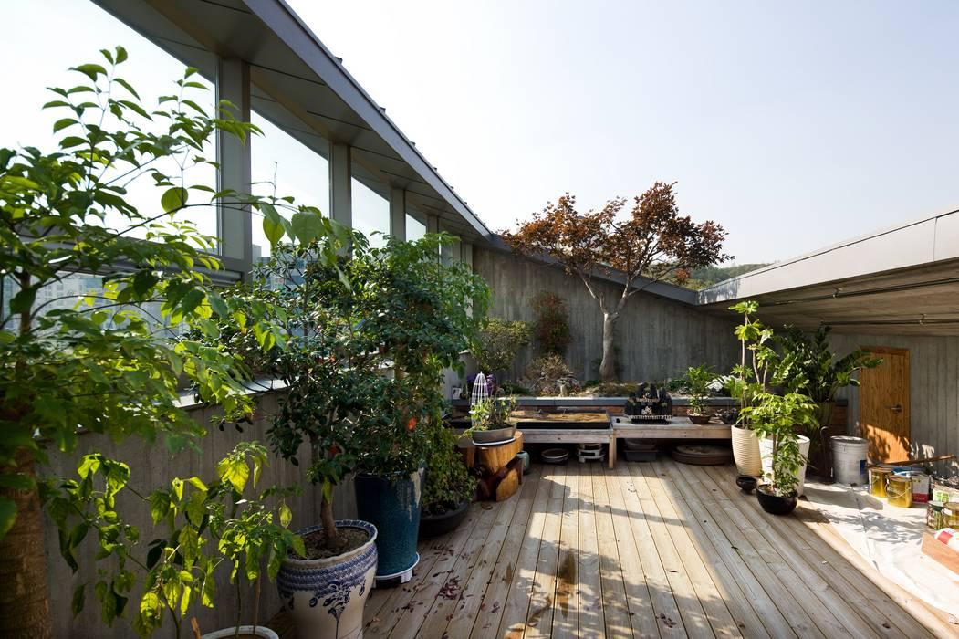 Garden by 수목피엠, Modern