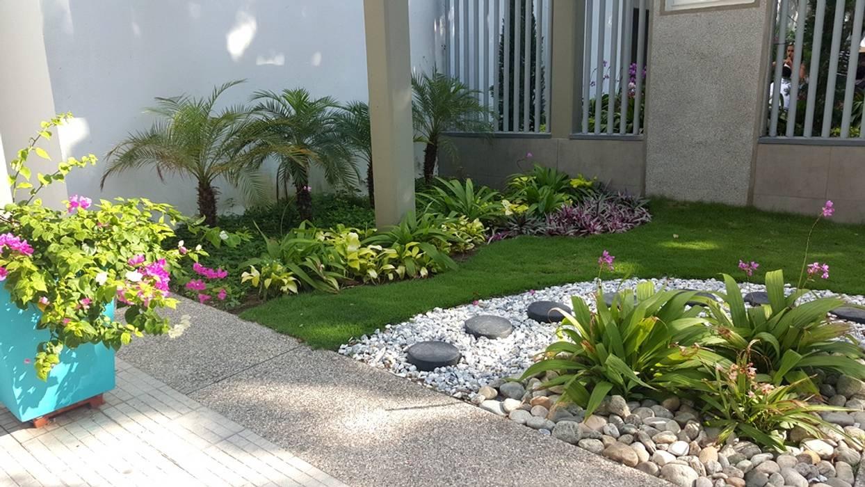 Jardines de estilo tropical de homify Tropical