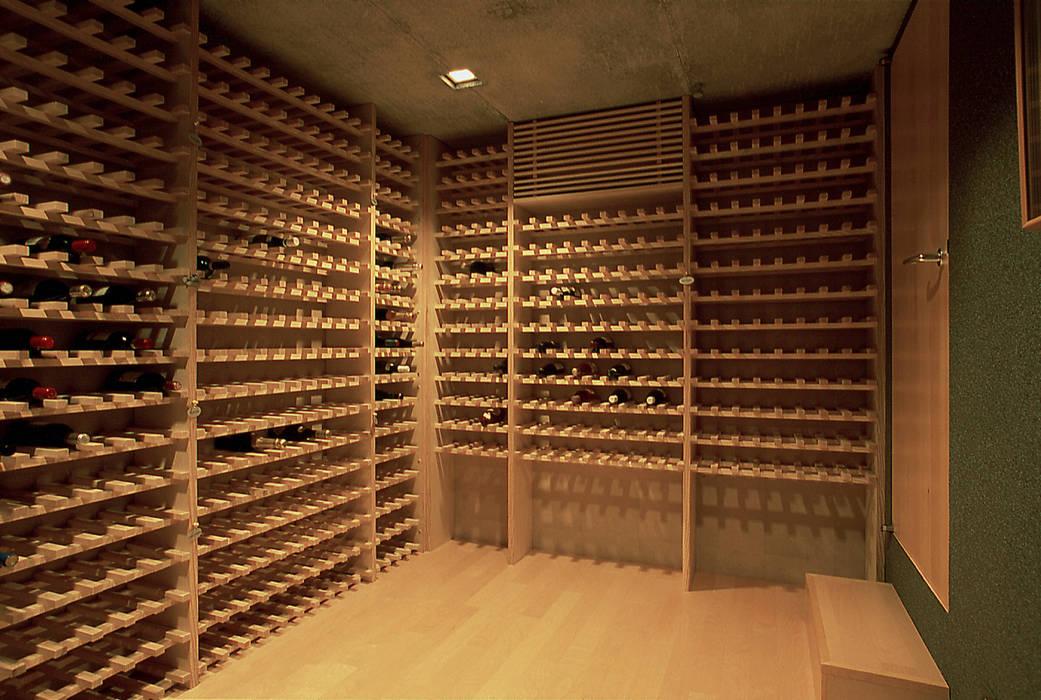 東谷山の住宅: アトリエ環 建築設計事務所が手掛けたワインセラーです。,モダン