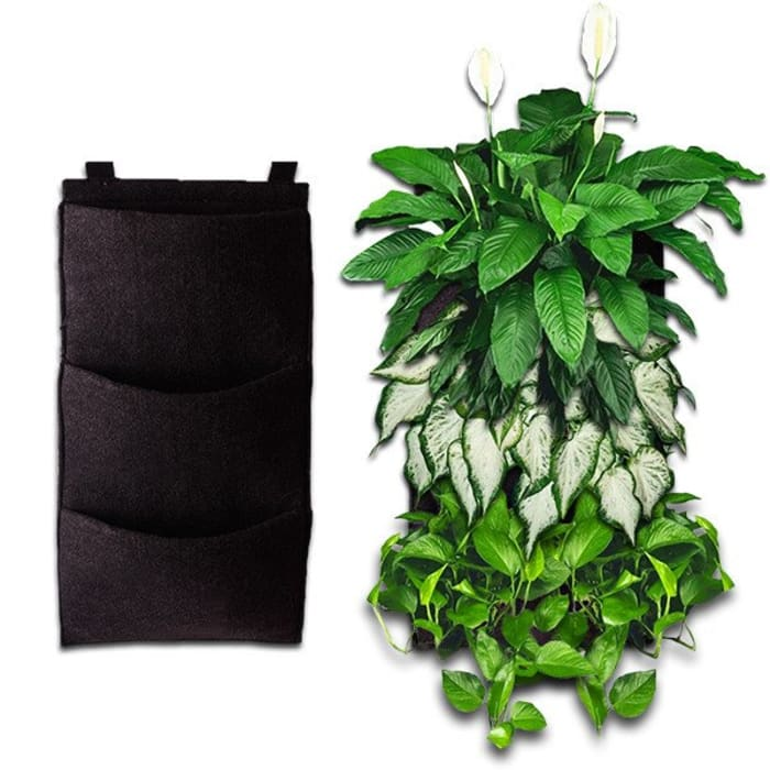 homify Garden Plants & flowers Synthetic