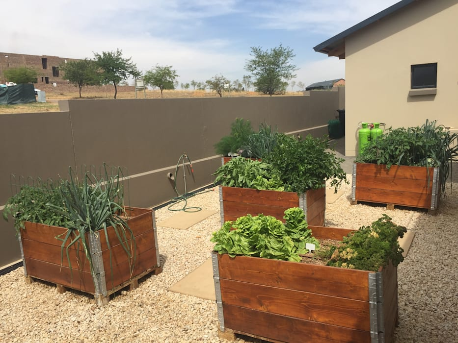 Organic Kitchen Garden with recycled wood planters Country style garden by Acton Gardens Country