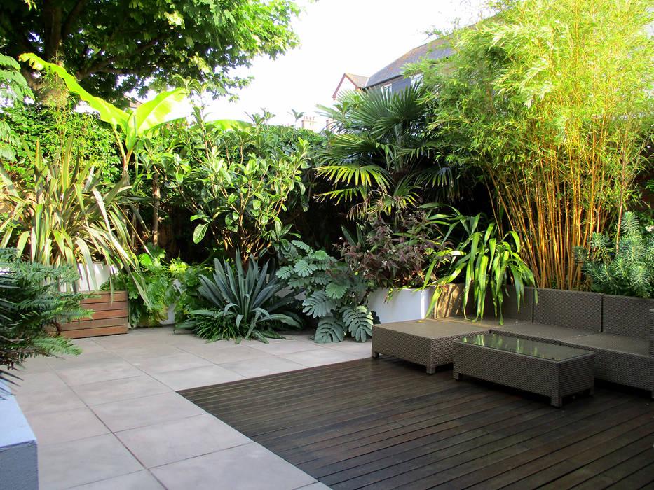 Tropical planting:  Garden by Lush Garden Design