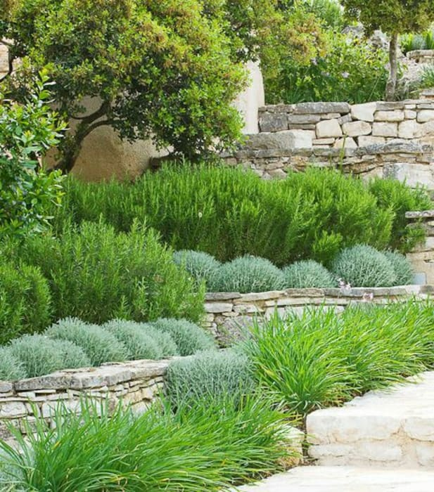 Traditional dry stone wall terracing:  Garden by Town and Country Gardens
