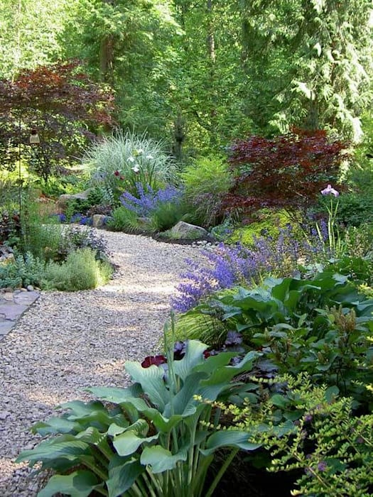 Informal planting scheme:  Garden by Town and Country Gardens