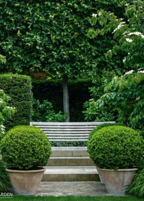 Formal garden symmetry: modern Garden by Town and Country Gardens