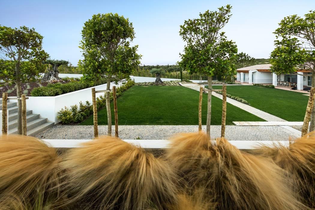 Villa Salema: Jardins  por Jardíssimo