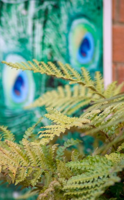 Peacock art and ferns:  Garden by Earth Designs