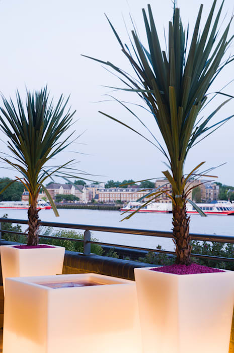 Illuminated planters and Thames: modern Garden by Earth Designs