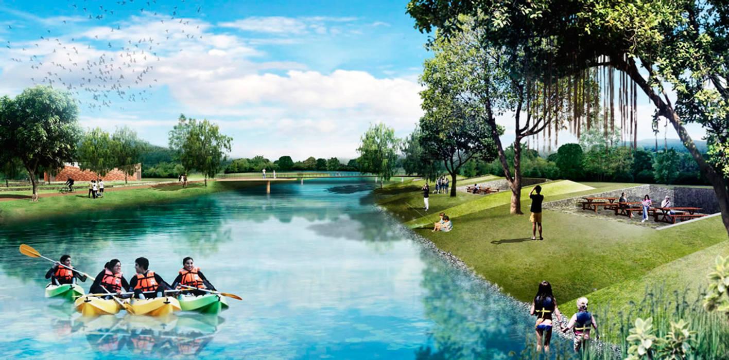 Biópolisが手掛けた池