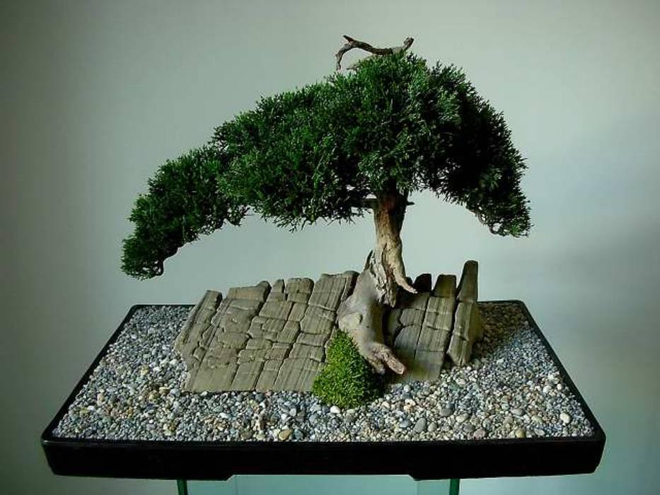 Kunstbonsai von Jan Pavlinec Klassisch Bambus Grün