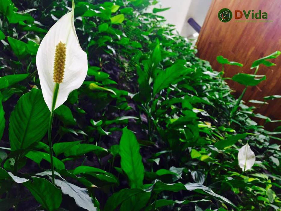 Floración en Jardines verticales interiores: Restaurantes de estilo  por DVida Jardines verticales