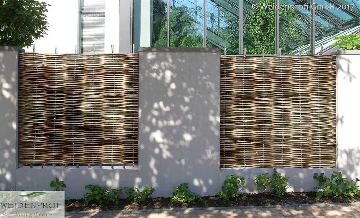 Sichtschutz Robinienzaun In Betonmauer Moderner Garten Von