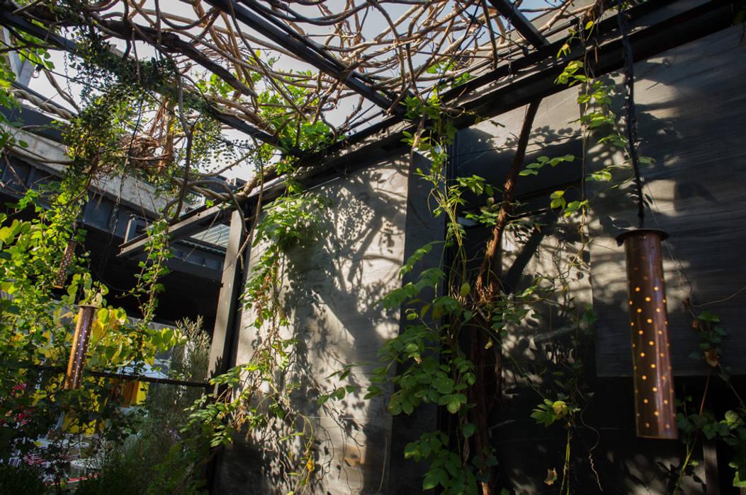The Standars Hotel Pergola andretchelistcheffarchitects Gastronomy