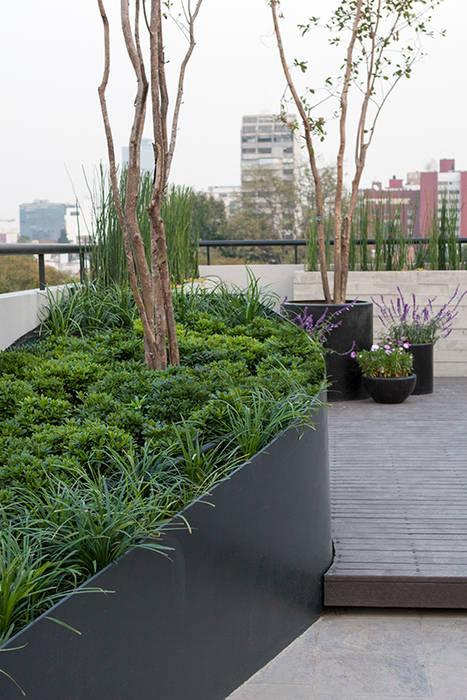 Roof Garden, corten, Hábitas Azoteas Verde