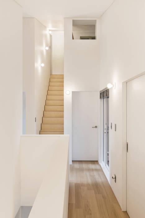 stpmj Koridor & Tangga Modern